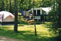 Photo of Lake Huron Resort